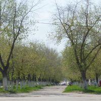 ул. Гагарина, Новокуйбышевск