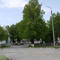 Школа-интернат., Новокуйбышевск