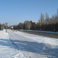Центр города Отрадного, Отрадный