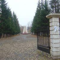 Вход а Парк, Отрадный