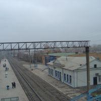 Станция Новоотрадная вид с моста, Отрадный