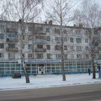 Центральная Библиотека, Отрадный