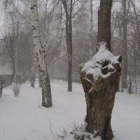Первый снег, Отрадный