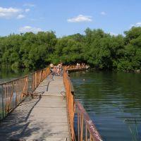Понтонный мостик, Пестравка
