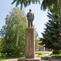 Ленин в Пестравке, Пестравка