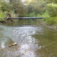 речка Большой Иргиз, Пестравка