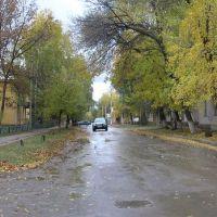Улица Ю. Гагарина., Похвистнево