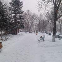 Снег в Похвистнево, Похвистнево