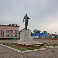 Ленин в Приволжье, Приволжье