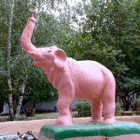 Слоник в парке, Сызрань
