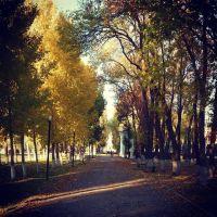 Золотая осень, Чапаевск