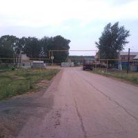 Ул. Фрунзе, Шентала