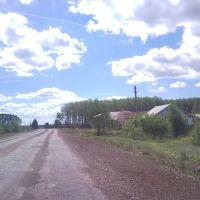 ул. Гагарина, Шентала
