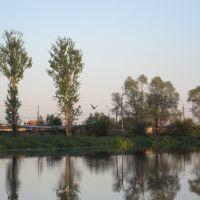 Река Ижора, Коммунар