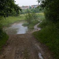 Пикалёво, дорожка  на ул. Набережную, июль 2012 г., Пикалёво