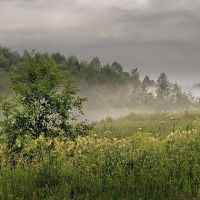 Пикалёво, р. Рядань, июль 2012 г., Пикалёво