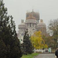 Ремонт Собора, Александровская