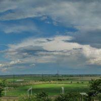 Вид на Кривянскую, Александровская