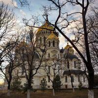 Золотые Купола VIII, Александровская