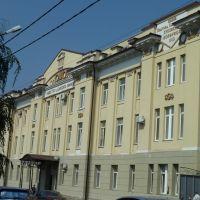 Старинная больница (общества донских врачей), Александровская