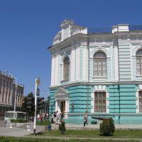 Донской музей, Александровская