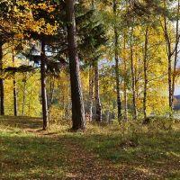 осенний парк, Бокситогорск