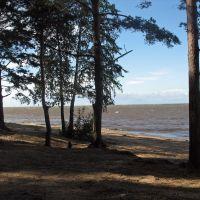 берег залива, Большая Ижора