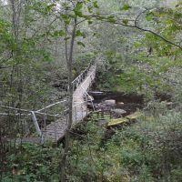 Мост через Чёрную Речку, Большая Ижора