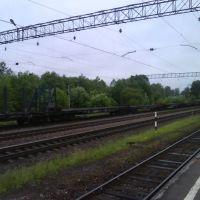 """Платформа """"Будогощь"""", Будогощь"""