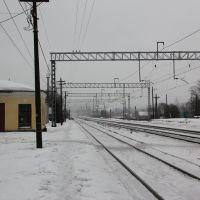 Станция Волосово, Волосово