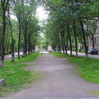 Бульвар Чайковского, Волхов