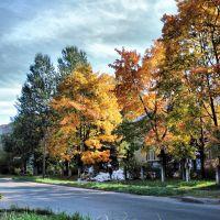 Улица Калинина (Street Kalinina), Волхов