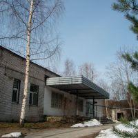 Церковь Св. Пантелеймона при больнице / The St Panteleimon Church at the Hospital, Всеволожск