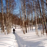 Зима / Winter, Всеволожск