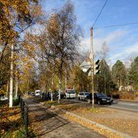 Autumn in Vsevolozhsk / Осень во Всеволожске, Всеволожск