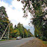 Koltyshy Highway / Колтушское шоссе, Всеволожск