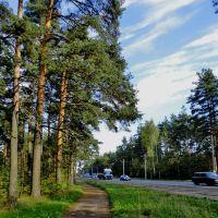 Highway Koltushskoe / Колтушское шоссе, Всеволожск
