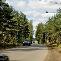 Road / Дорога, Всеволожск