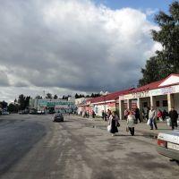 Автостанция, Всеволожск