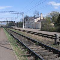 Дорога в СПб, Вырица