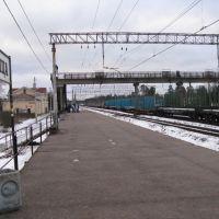 жд станция Вырица, Вырица