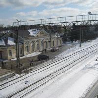 Вид на ж/д вокзал с путепровода, Вырица