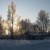 Зима в Высоцке, Высоцк