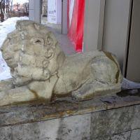 Лев, Гатчина