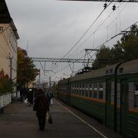 Гатчина Варшавская, Гатчина