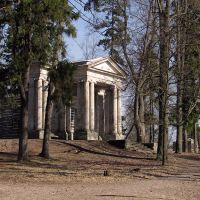 Gatchina. Park. Birch small house., Гатчина