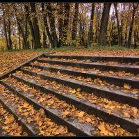 Лестница в Верхнем Голландском Саду. Осень 2011, Гатчина