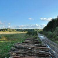 Дорога в лес, Дружная Горка