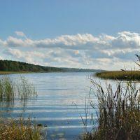 Орлинское озеро, Дружная Горка