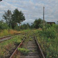 Железная дорога, Дружная Горка